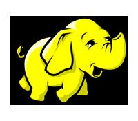 Logo Formation Hadoop