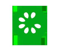 Logo Formation Cucumber BDD