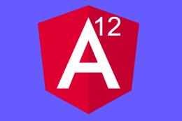 image angular 12